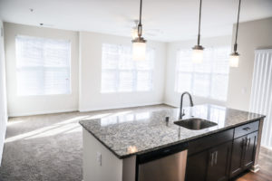 Yet Even More Resolutions for Apartment Renters to Follow